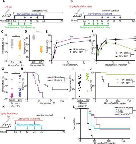 Modulation of the sigma-1 receptor–IRE1 pathway is