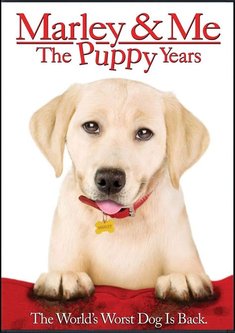 Marley & Me: The Puppy Years DVD Release Date January 3, 2012